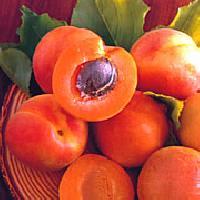 Jednoduché ovocné knedlíky