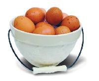 Brokátová vejce