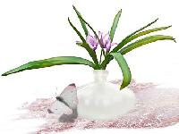 Váza – nebo že by stačila PET lahev?